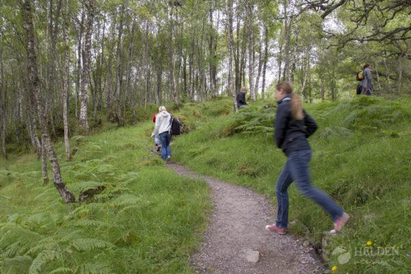 Aufstieg zum Aussichtspunkt Glen Affric