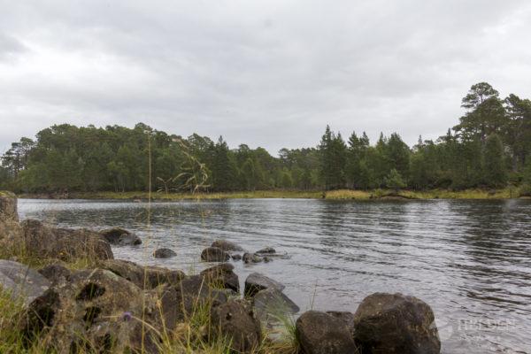 River Affric - Glen Affric